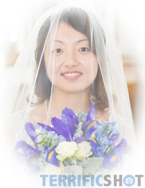 wedding_bride_with_veil_san_francisco_city_hall